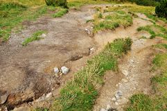 Soil erosion. On a slope by water and walking stock image