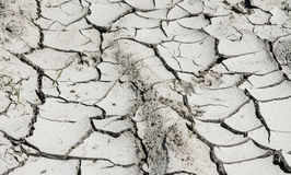 Close-up of soil erosion texture. Arid ground in summer hot. Barren desert from dry cracked mud. Gray background from detail of damaged parched field. Idea of royalty free stock image