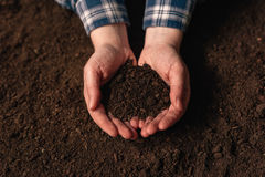 Soil fertility analysis as agricultural activity. Female farmer holding arable ploughed dirt in cupped hands Royalty Free Stock Photo