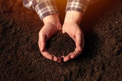 Soil fertility concept. Female farmer with cupped hands full of fertile soil with ability to sustain agricultural plant growth royalty free stock photos