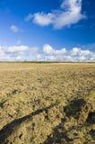 Soil field Stock Photos