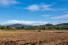 Soil on field agriculture in thailand Stock Photography