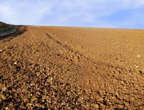 Soil field background. Ready to be planted Royalty Free Stock Photo