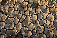 The soil in the fissures Stock Images