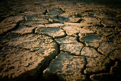 The soil in the fissures Stock Image
