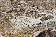 Soil with fissures. Soil with stones and numerous fissures texture Royalty Free Stock Images