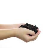 Soil on girl hand Stock Image
