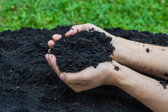 Soil for glow a plant Royalty Free Stock Image