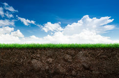 Soil and grass in blue sky. Loose soil and green grass on blue sky background Stock Photos
