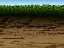 Soil with grass Stock Photography