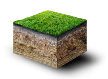 Soil with grass. Cut of soil with grass Stock Image