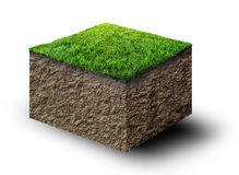 Soil with grass Royalty Free Stock Photography