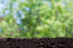 Soil and green background Royalty Free Stock Images
