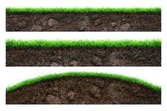 Soil and green grass Stock Image