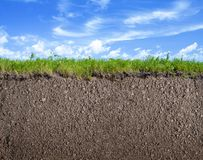 Soil Ground, Grass And Sky Nature Background Royalty Free Stock Photography