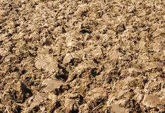 Soil ground Royalty Free Stock Photography