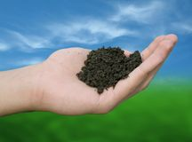 Soil in hand Stock Images