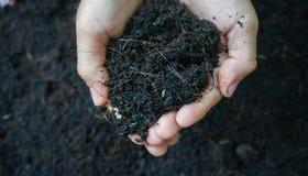 Soil in hand. Stock Photo