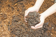 Soil- handful. Female hands, humus soil Royalty Free Stock Image