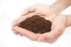 Soil in hands. Isolated on white background Stock Images