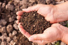 Soil in hands. Female hands full of soil over soil background.Representing fertility Royalty Free Stock Photos