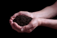 Soil in hands Stock Photo