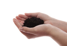 Soil in hands Stock Photography