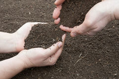 Soil in hands Stock Photos
