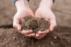 Soil in hands Royalty Free Stock Photography