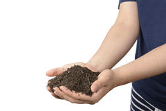 Soil on hands Stock Images