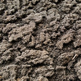 Soil with high detail. The surface of the soil with high detail Stock Photos