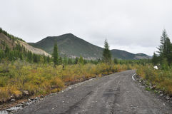 Soil highway in Yakutia. Royalty Free Stock Photos