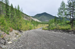 Soil highway in Yakutia. Royalty Free Stock Photography
