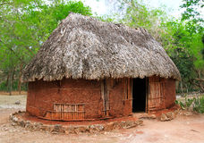 Soil house. A humble hut in the jungle Stock Images