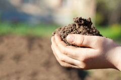 Soil in human palms Royalty Free Stock Image