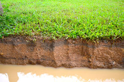 Soil Layer Stock Photography