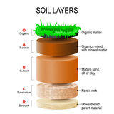 Soil layers. Soil Formation and Soil Horizons. Soil is a mixture of plant residue and fine mineral particles, which form layers. Vector diagram Stock Photos