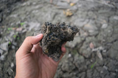 Soil in man arms for earth Stock Photo
