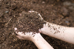 Soil mineral Royalty Free Stock Image