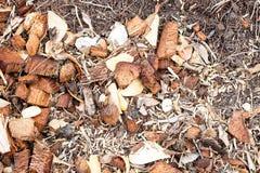 Soil mixed with coconut spathe fiber Stock Photos