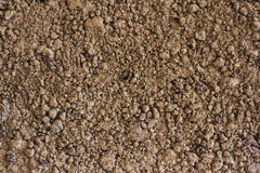 Soil is a natural clay minerals are naturally many species suita Royalty Free Stock Photo