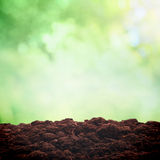 Soil in nature Royalty Free Stock Photo
