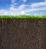 Soil Or Dirt Section With Grass Under Sky As Stock Photo