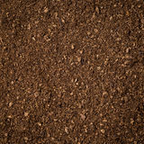 Soil peat moss dirty background and texture Stock Photos