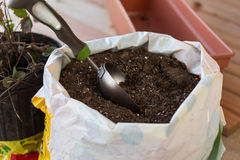 Soil for planting flowerpots Stock Photography