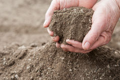 Soil for plants Royalty Free Stock Photo