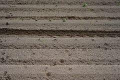 Soil preparation in Argiculture Stock Image