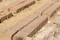 Soil preparation for bricks Stock Photo