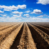 Soil preparation for cultivation vegetable Royalty Free Stock Photography