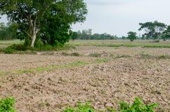 Soil preparation Royalty Free Stock Photography